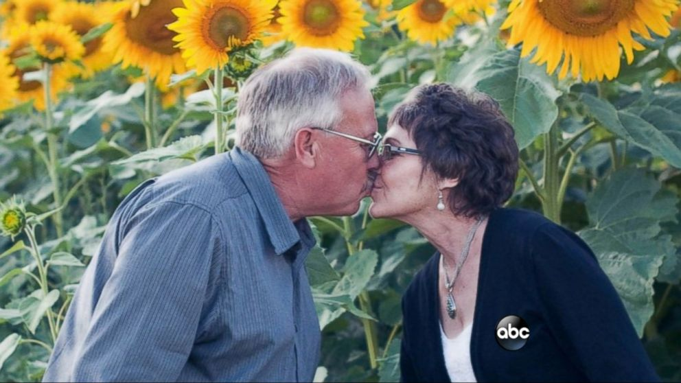Wisconsin Man Plants 4 Mile Stretch Of Sunflowers In Tribute To
