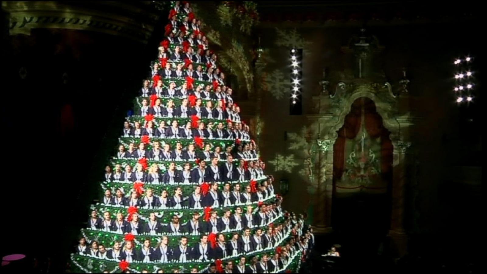 high school choir performs as 67 foot singing christmas tree abc news - Singing Christmas Tree Lights