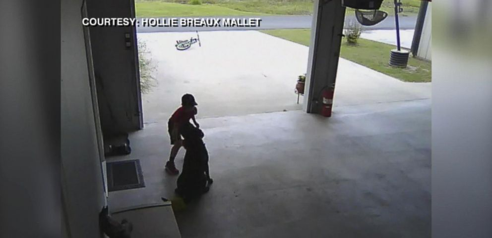 VIDEO: Boy Sneaks Into Neighbors Garage to Hug Dog