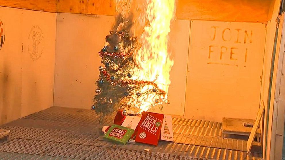 VIDEO: Holiday Home Dangers