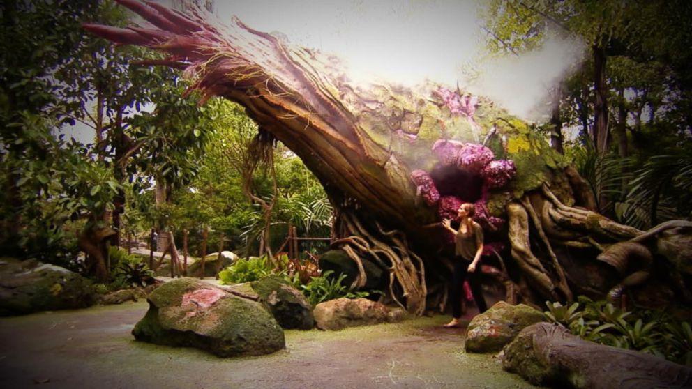 Inside Pandora: The World of Avatar at Disney World