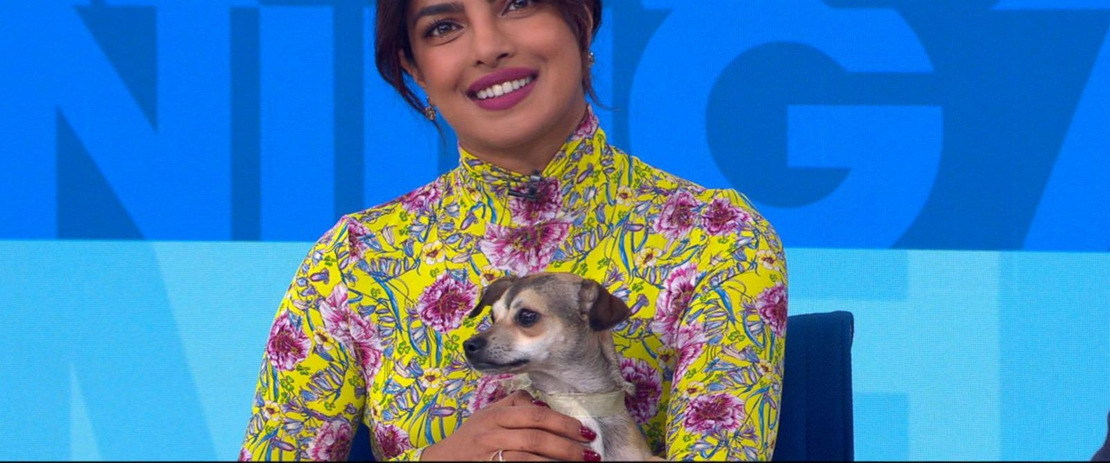VIDEO: Catching up with Priyanka Chopra, and her dog, on 'GMA'