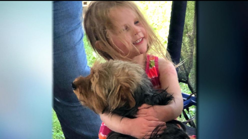 Yorkie stays with missing toddler all night, alerts search party