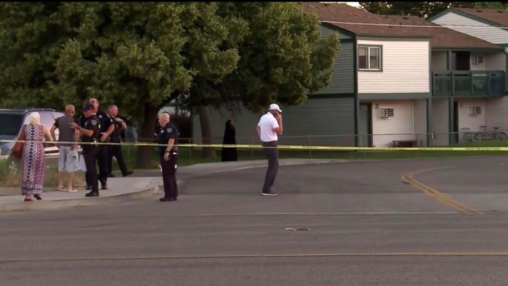 6 children among 9 people stabbed at birthday party in