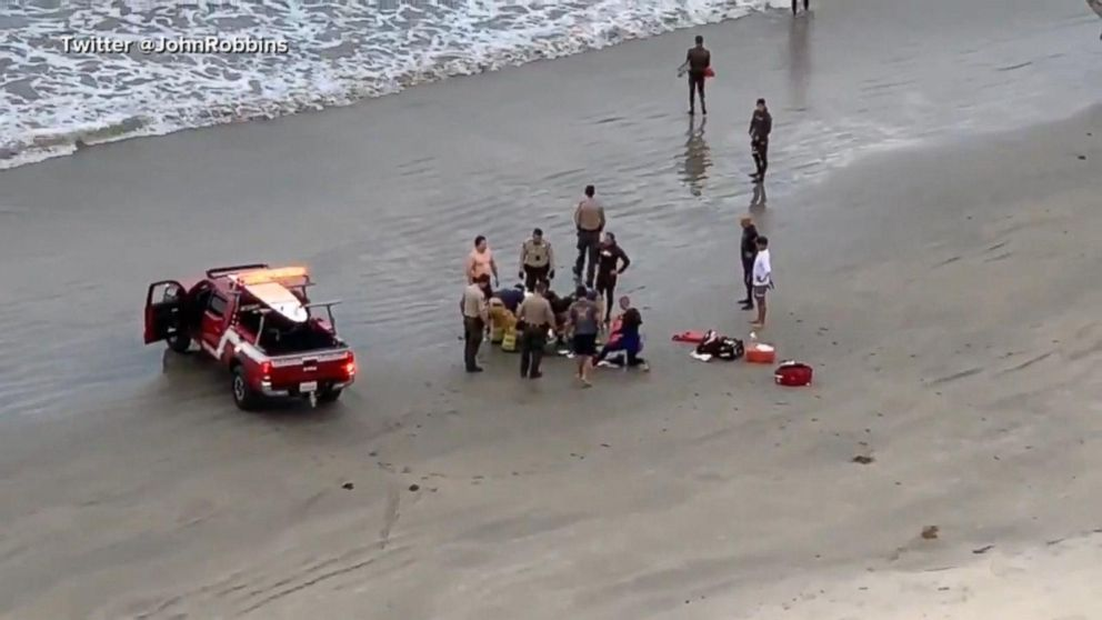 Boy, 13, in critical condition after being bit by a great white shark Video - AB...