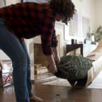 VIDEO: Amazon now delivering full-size Christmas trees