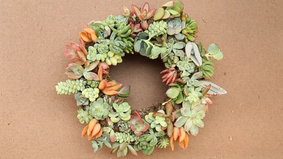 This Diy Succulent Wreath Is Major Holiday Decor Goals Abc