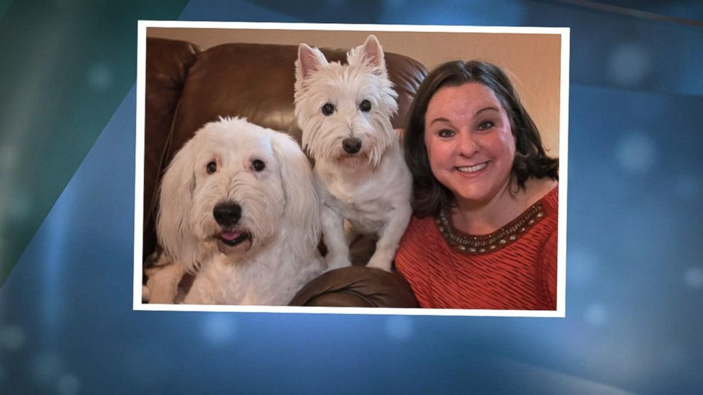 New app reunites missing pets with owners by using facial recognition