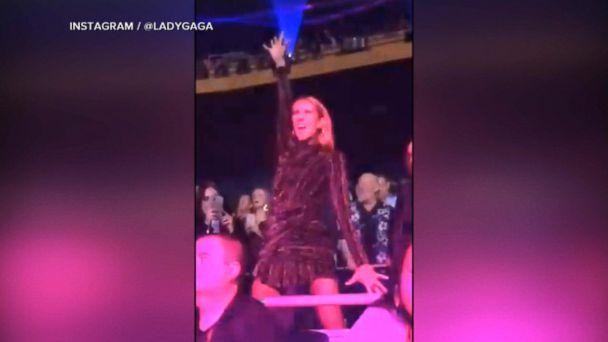 Celine Dion spotted at Lady Gaga's Las Vegas residency debut