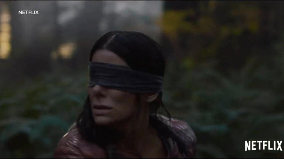 Netflix Warns People Not To Do The Bird Box Challenge Abc News
