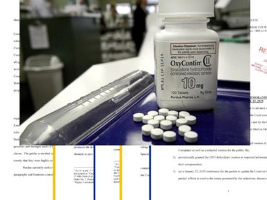 WATCH Bombshell lawsuit takes on family behind OxyContin