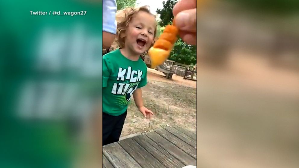 Say cheese ... fry! Boy's reaction to Arby's curly fries breaks the internet.