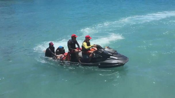 11-year-old boy, snorkeler latest shark attack victims