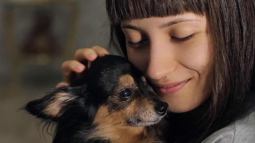 Happy National Dog Day! Here's how dogs can improve your mental health