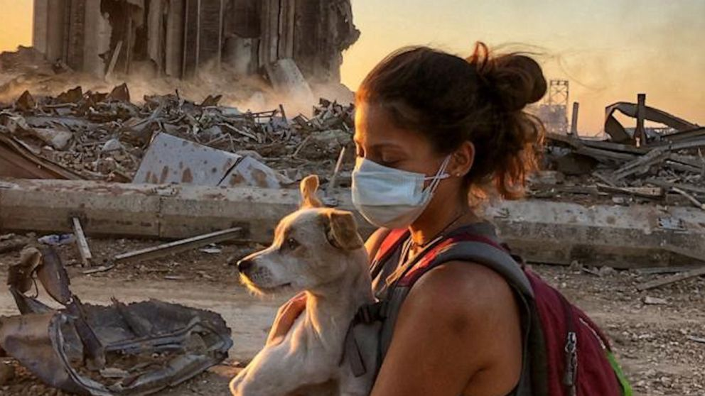 Pet parents reunite with their fur babies after massive explosion separated them