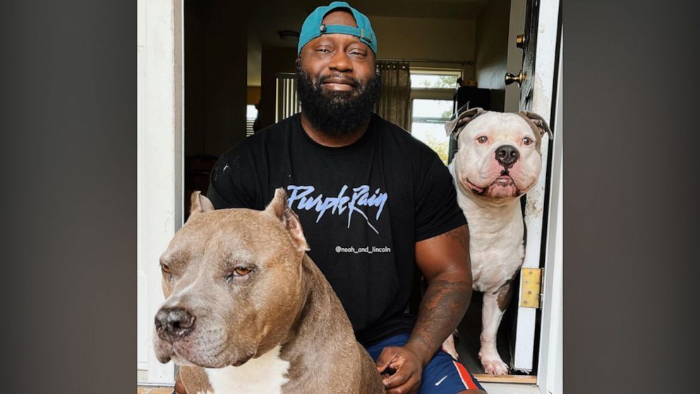Military vet and his pit bulls are changing misconceptions about dogs — and people