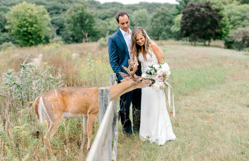 PHOTO: Morgan and Luke Mackley were surprised by a deer while their wedding photos were being taken.