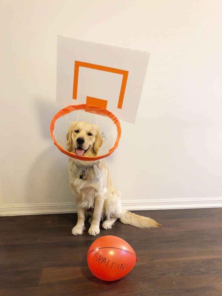 PHOTO: Gus poses as a basketball hoop.