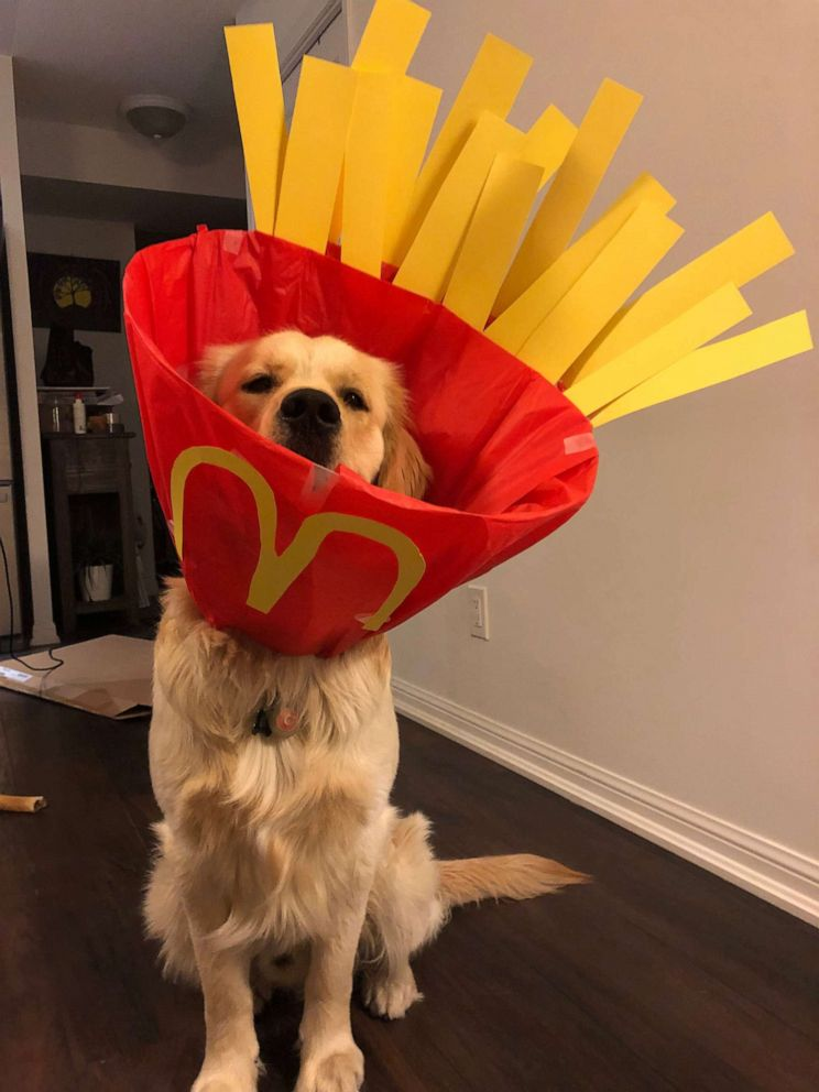 PHOTO: Gus poses as McDonalds french fries.