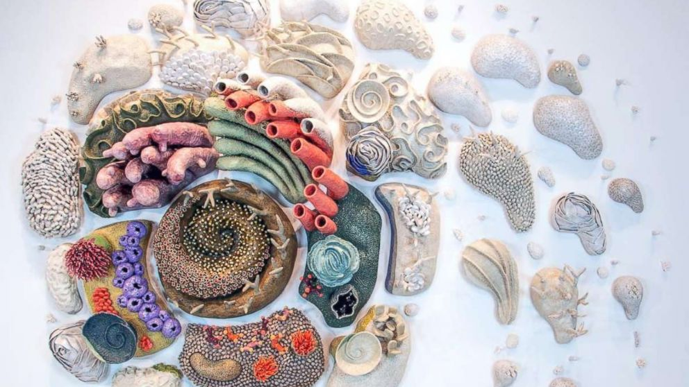"""""""Afterglow (Our Changing Seas VI)"""" by sculptor Courtney Mattison."""