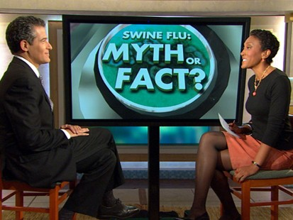 VIDEO: Clearing Up Myths About Swine Flu