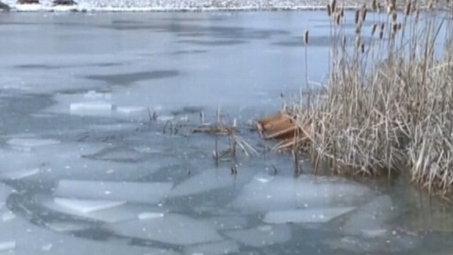VIDEO: When his 8-year-old sister fell through the ice, the young hero sprang into action.
