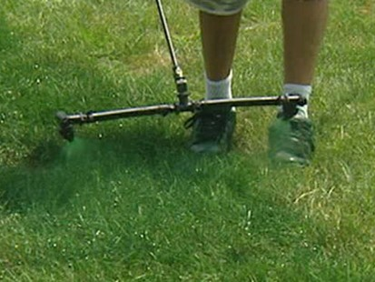 VIDEO: The New Way to Get a Green Lawn