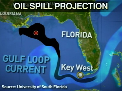VIDEO: Oil Leak: New Video and Tar Balls