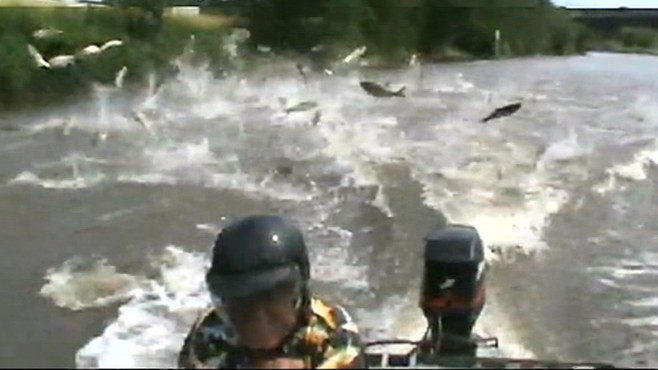 VIDEO:Asian carp are a looming threat to the Great Lakes 7 billion fishing industry.