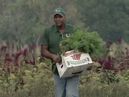Urban farming genius