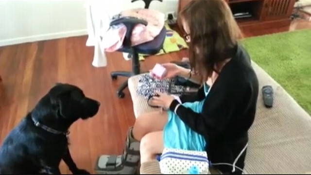 VIDEO: Man's Best Friend Helps Propose
