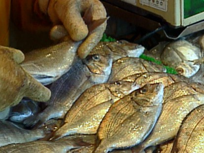 Fish that have low and high amounts of mercury abc news for Mercury in fish list