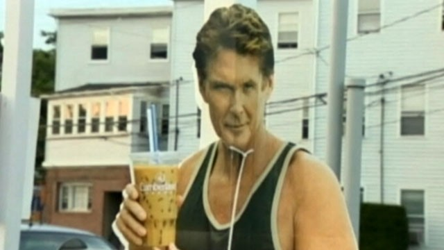 Thefts of Hasselhoff Cutouts No Laughing Matter