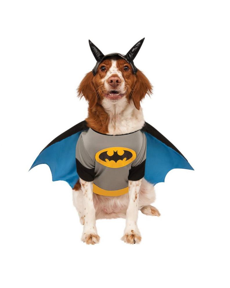 PHOTO: Batman Pet Costume - DC Comics