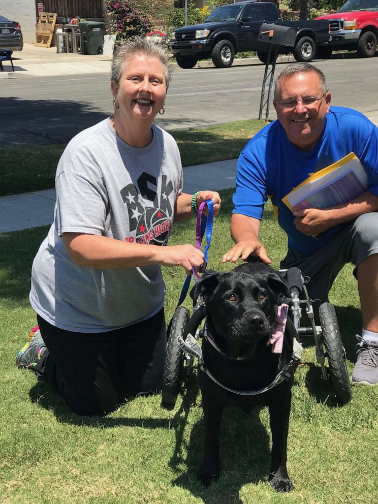 PHOTO: Maggie was adopted by Penny Yearsley on June 9, 2019. Yearsley and her family own a nonprofit called Bills Special Kids, where they invite 130 children with special needs and their families to do fun activities.