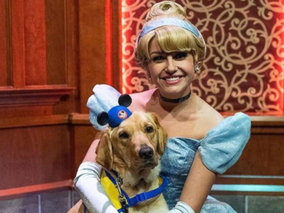 PHOTO: Ashley Wilt of Colorado, shared footage of Elijah, her service dog-in-training, onto Instagram as he met Cinderella at Disneyland.