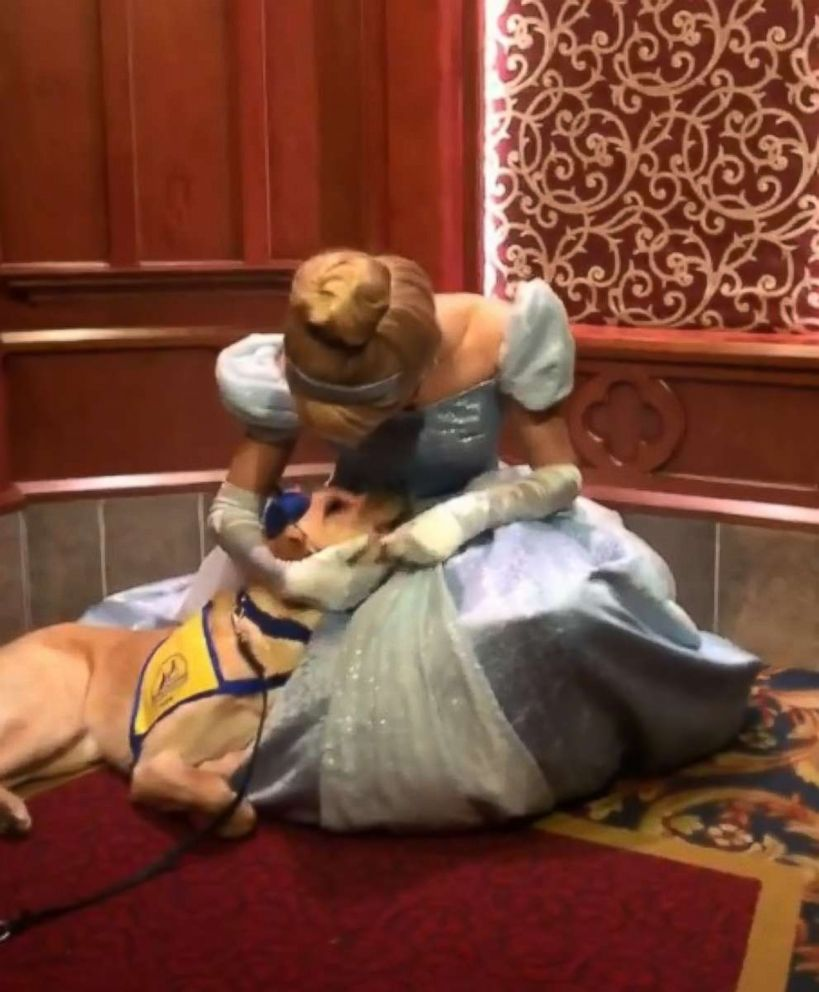 PHOTO: Elijah, a 1-year-old pup, was thrilled when he got the opportunity to meet Cinderella at Royal Hall at Disneyland in Anaheim, California.