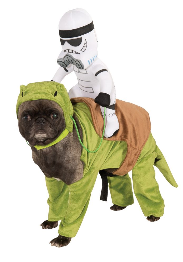 PHOTO: Dewback Pet Costume