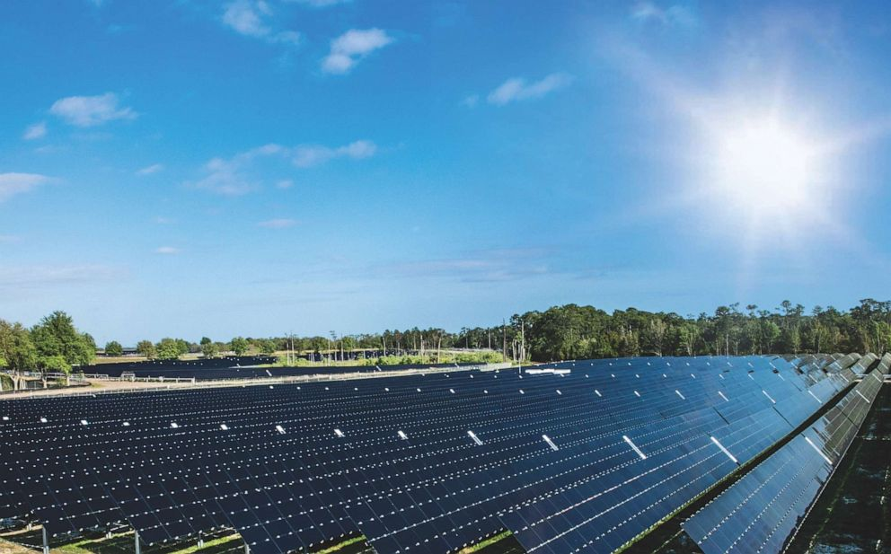 PHOTO: At its max performance, solar energy will be responsible for 25 percent of Walt Disney Worlds power needs.