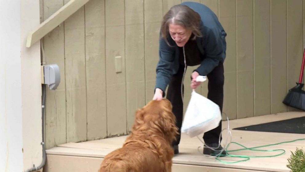 PHOTO: Karen Evelth's dog Sundance delivers groceries to neighbor Renee Hellman nearly everyday during the coronavirus pandemic.