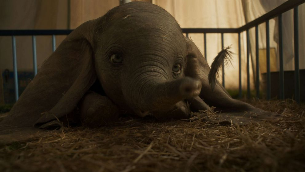 PHOTO: In Disneys all-new, live-action feature film Dumbo, a newborn elephant with oversized ears make him a laughingstock in an already struggling circus. But Dumbo takes everyone by surprise when they discover he can fly.