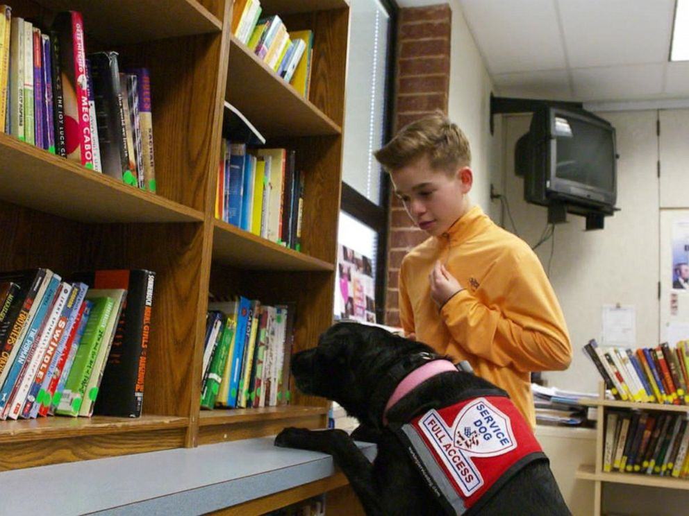 PHOTO: Hayden Kreikemeier, 13, first got his Labrador retriever, Trixie, three years ago to help with his life-threatening nut allergy.