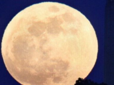 VIDEO: Night owls will be treated to a dazzling sight this weekend courtesy of the lunar orbit.