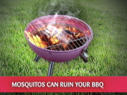 VIDEO: Changing outdoor light bulbs to color can help cut down the mosquitoes.