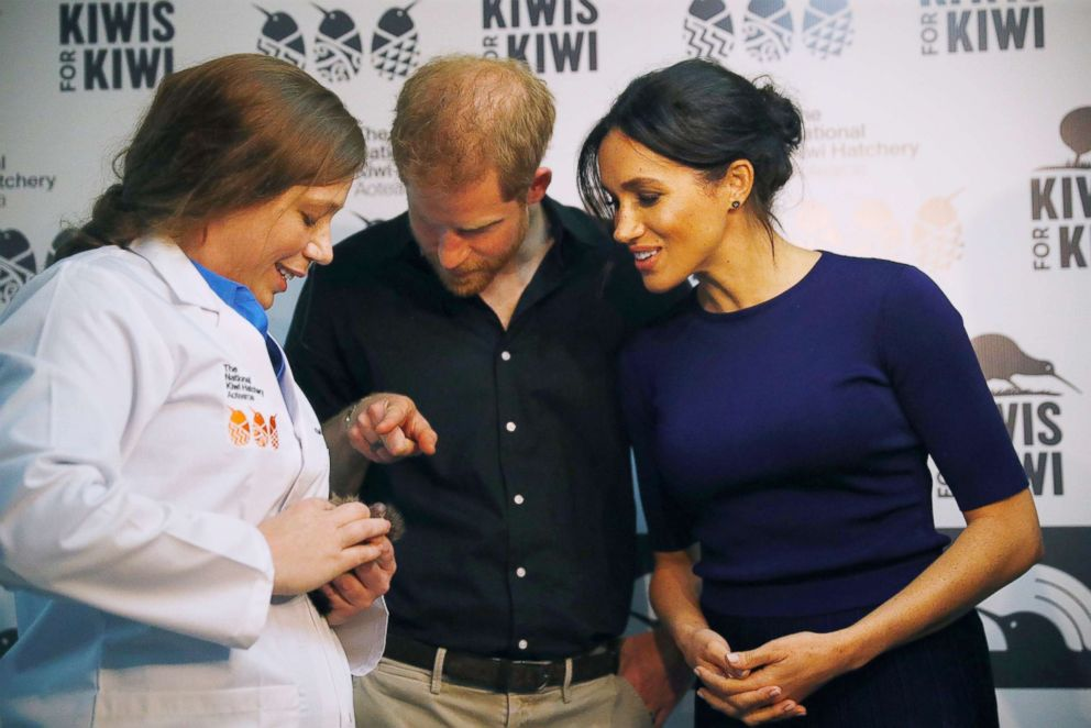PHOTO: Prince Harry, Duke of Sussex and Meghan Markle, Duchess of Sussex look at kiwi chicks during their to the National Kiwi Hatchery at Rainbow Springs, Oct. 31, 2018, in Rotorua, New Zealand.