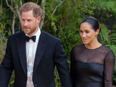 Pink, Ellen slam 'bullying' of Duchess Meghan: 'It's out of control'