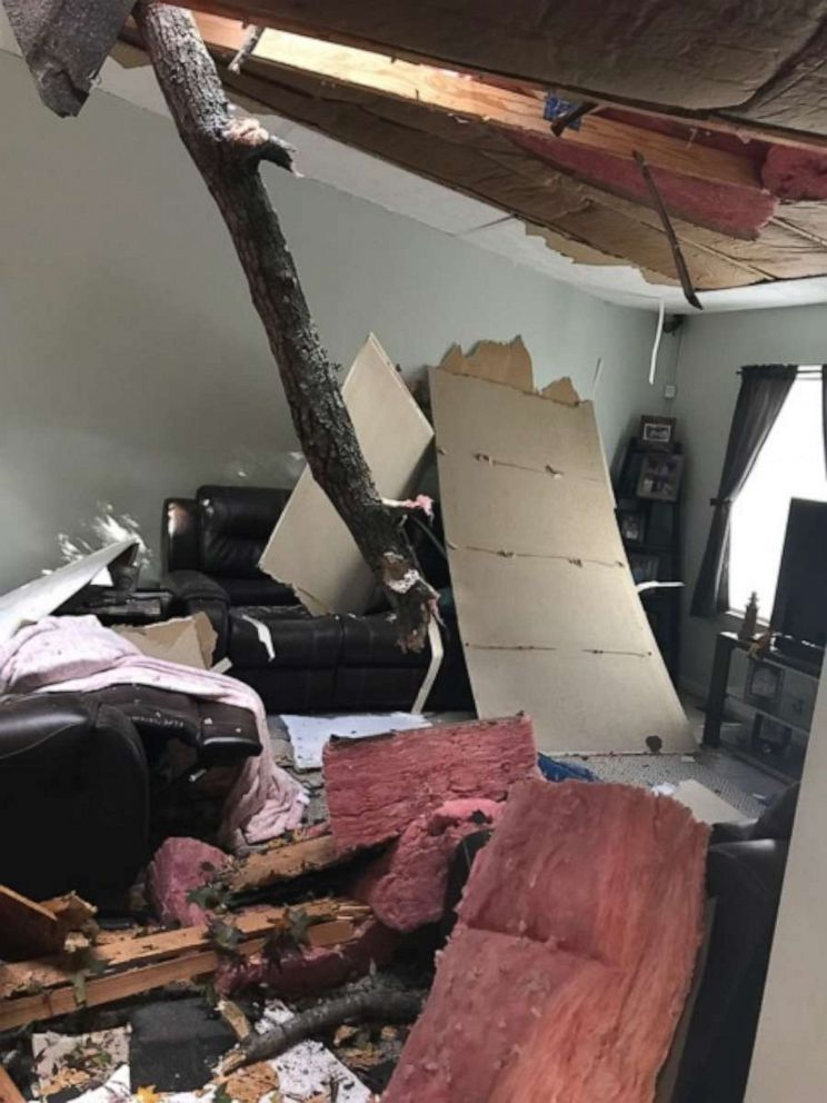 PHOTO: A Maryland family were startled when a tree crashed through the roof of their home.