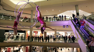 PHOTO An aerialist performing during the November 28, 2009 show, was injured and hospitalized after falling to the shopping center floor.