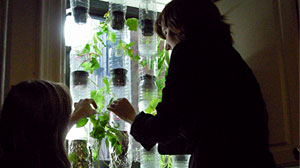Photo: Just One Thing: vertical hydroponic window farms