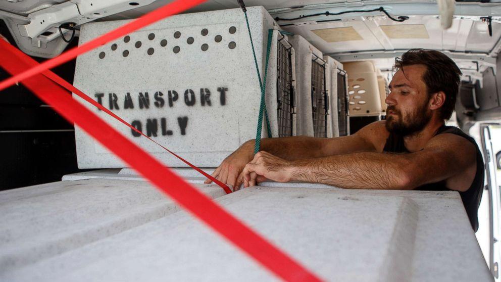 Evan Shepard, the lead canine behavior assessor for McKamey, works on securing kennels in a transport van at McKamey Animal Center on Sept. 12, 2018 in Chattanooga, Tenn.